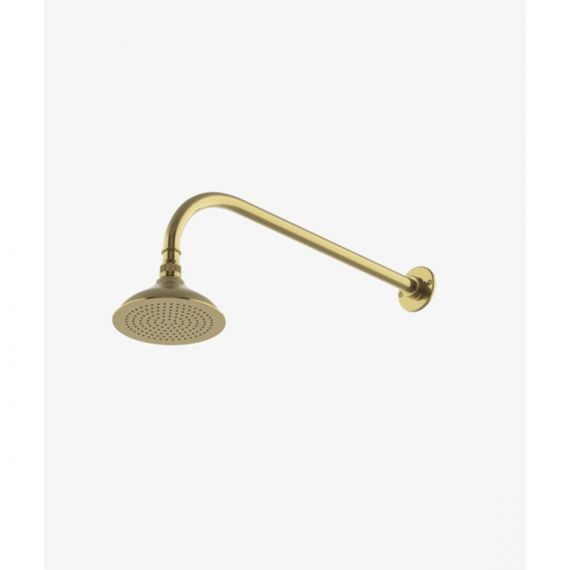 "Waterworks Easton Classic Unlacquered Brass 6"" Shower Rose"